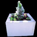 PALA-Kukkakuutio
